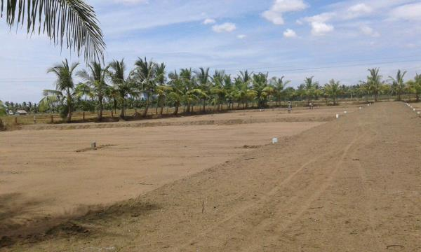 On main Road Property Pattukottai .Plot Pattukottai on Road Property, Best price On Road property. - by Homeland Enterprises - 91 9445035669, Chennai