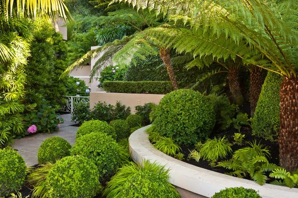 Garden Landscaping Services in South Delhi  Is your Garden giving you bore feeling? Contact us and give your Garden a beautiful look. Plant Fruit and Decorative Plants. - by RAK Nursery & Farm House - Palm Leaves, New Delhi