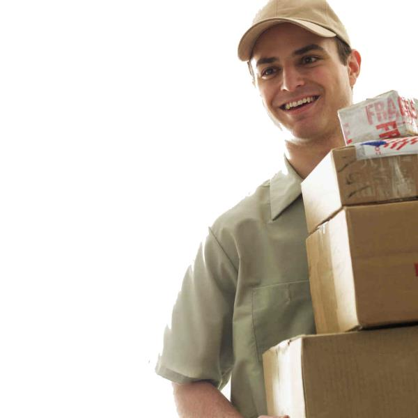 CHENNAI BEST COURIER SERVICE    Saranam Logistics Private Limited provides specialized courier & cargo services from Chennai to all over the world. Our Cargo Service Company is structured and designed by experienced Professionals. Our stren - by INTERNATIONAL COURIER @ TNAGAR, Chennai