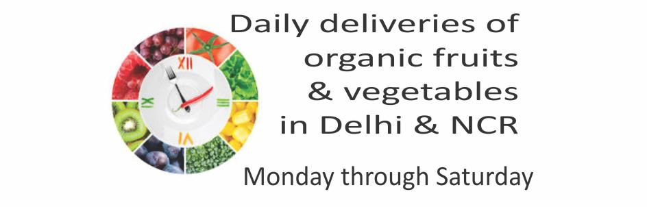 Daily deliveries of Organic Fruits and Organic Vegetables in Delhi & NCR - Monday through Saturday - Dubdengreen Organic Bounty.  And a host of other organic groceries.  Order online at Organic Bounty - www.organicbounty.com  Or visit our f - by Dubdengreen, South Delhi