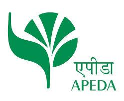 WE M/s, EKADANT ENTERPRISE are Registered Exporter of APEDA. The Agricultural and Processed Food Products Export Development Authority (APEDA) was established by the Government of India under the Agricultural and Processed Food Products Exp - by Ekdant Enterprise, Ahmedabad