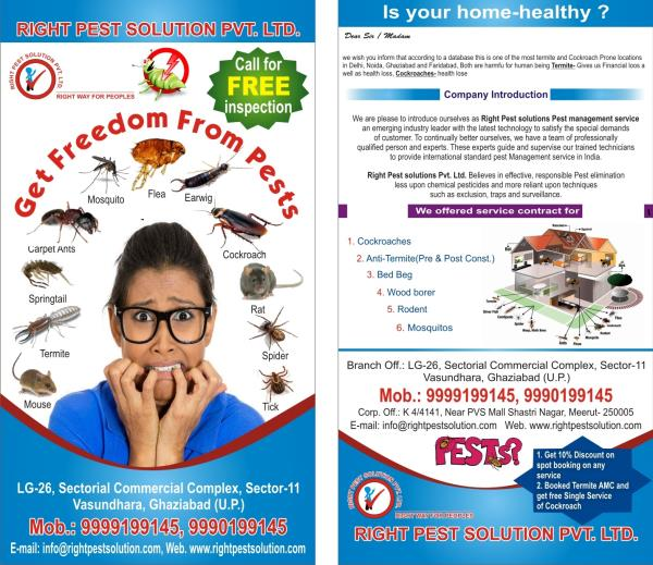 Get Freedom From Pests  - by Right Pest Solution Pvt Ltd, Ghaziabad