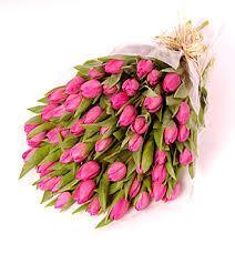 tulip flower bouquets tulip flower bouquets in coimbatore  home delivery tulip flower bouquets in coimbatore  free tulip flower bouquets - by Siva Flowers, Coimbatore