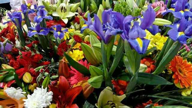 VFX work in sivakasi for more info click here www.shristeeanimaax.com - by Shristee Animaax 04562 272622, Sivakasi