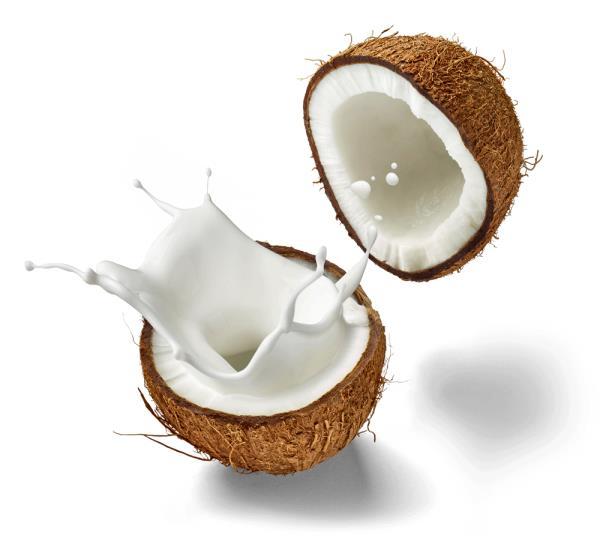 Why You Should Swap Coconut Oil for Coconut Milk https://t.co/A15K72fasH via @wordpressdotcom - by ApidaeCare, NEW DELHI