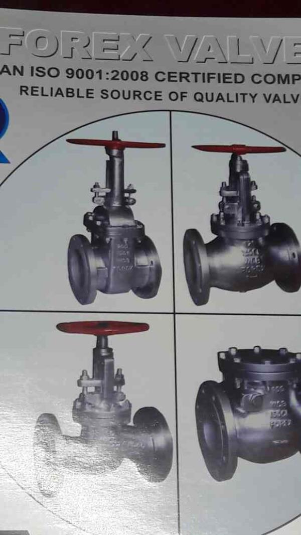 We are the leading manufacturer of Valves in Ahmedabad - by Forex Engineers , Ahmedabad