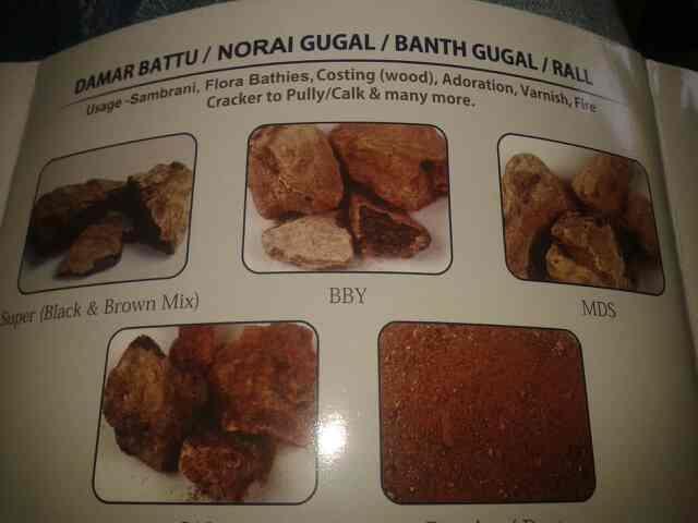 we are leding supplier of damar battu. noragi gugal.banthgugal rall on ahmedabad - by Dilipahd, Ahmedabad