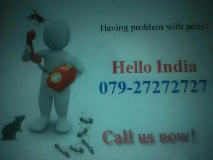 ONLINE YELLOW PAGES IN AHMEDABAD , CALL 079- 27272727 HELLO INDIA FOR PEST CONTROL SERVICES - by Hello India Pages | www.helloindia.co.in, Ahmedabad