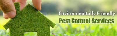 Pest Control Services, Residential Pest Control Services, Housekeeping Services, Commercial Pest Control Services, Residential Pest Control Services, Residential Pest Contr - by KC PEST CONTROL SERVICE S  CALL US-  +91 9828066521  +91 9414757925  +91 9414758110, Udaipur