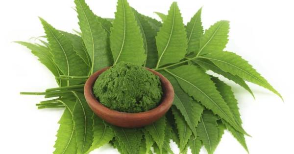 Neem for Incurable Diseases  Neem has answers to a number of diseases for which modern medicines has no answers such as Alzheimer's Disease, Liver Cirrhosis, Motor Neuron Disease, Auto Immune Disorders etc.  Give yourself an Alternative Opt - by AVM Enterprises - A Concept Behind Holistic Wellness !, Delhi