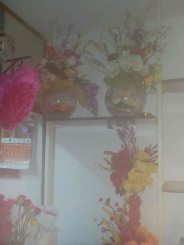 We have very good set of flowers boques roses orchid flowers many more - by Suraj Florist, Ahmedabd