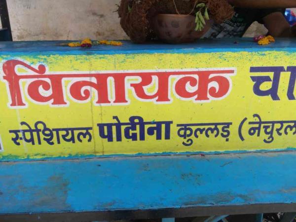 pudina tea in udaipur  - by Vinayak  chai wala, Udaipur
