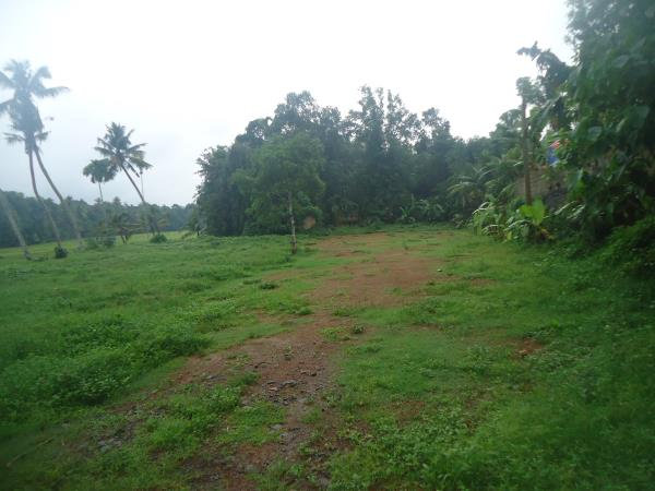 40 cent excellent residential area at Chottanikkara, located near paddy field with a great scenery. Cost rs. 1.2 Cr. Contact Joseph - 9947854006 - by Plots In Kochi, Ernakulam