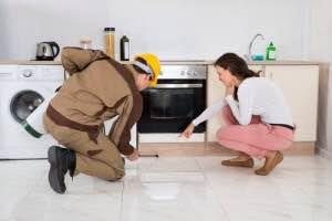 Best Pest Control Service in Chennai. - by ENTOS De - Pest Solution Pvt Ltd, Chennai