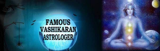 Famous astrologer Amit Shastri  - by Amit Shastri, Montgomery County