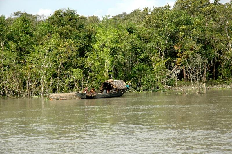 Tour Operator for Sundarban in Kolkata. we offer the best package for trips around the globe - by SOUVENIR TOUR AND TRAVELS, Kolkata