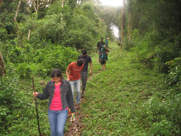 MEGHAMALAI                                THIS  IS A GREAT LOCATION  FOR A TREK OFFERING ROUTE WITH TEA ESTATES INITIALLY AND THEN DENSE FOREST WITH WILD ANMAL LIKE MALABAR  GIANT SQUIRREL, WILD ELEPHANT AND THE PLACE IS COMPLETELY SECLUDED - by Southindian Eco Tourism, Madurai
