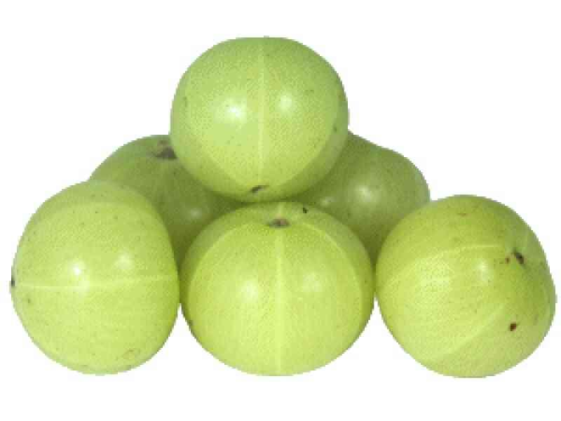 Emblica Officinalis or Amla is aperient, carminative, diuretic, aphrodasiac, laxative, astringent and refrigerant. It is the richest known source of vitamin 'C'. It is useful in anaemia, jaundice, dyspepcia, haemorrhage disorders, diabetes, - by Raj Food & Pharma, Vadodara