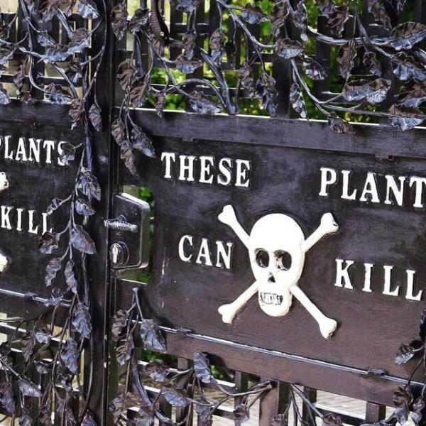 Plants that kill humans  - by John Doe, Mumbai Suburban