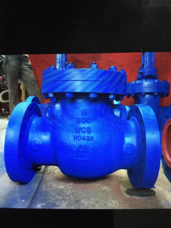 Swing check valve - by Ashish Valve, Ahmedabad