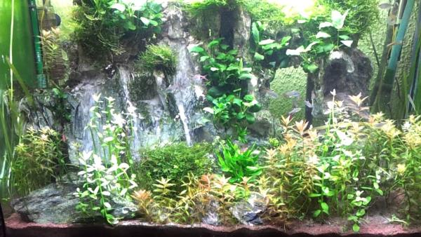 We Are The Best Water Fall Fish Tank Manufacturer In Madurai - by Annamalai Glass 9865573743, Madurai