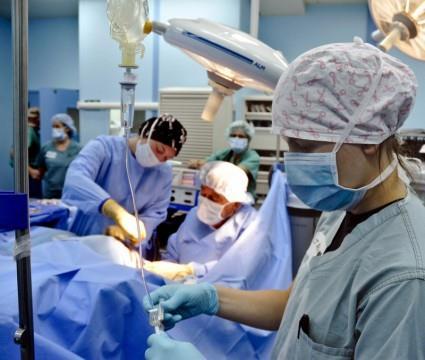 HOSPITAL ASSISTANCE IN CHENNAI   HOSPITAL ASSISTANCE IN EGMORE   HOSPITAL ASSISTANCE IN ADAYAR  HOSPITAL ASSISTANCE IN TEYNAMPET   HOSPITAL ASSISTANCE IN ALWARPET   HOSPITAL ASSISTANCE IN  T-NAGAR  HOSPITAL ASSISTANCE IN  THAMBARAM  HOSPITA - by Home Health Care -7401058711, Chennai