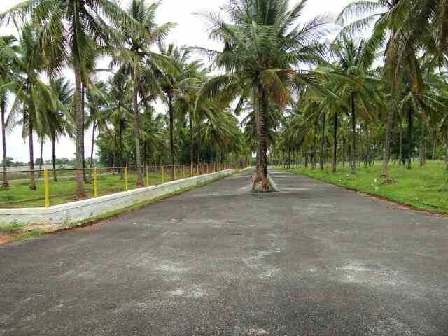 Sites behind Airport..Mysore 30x50, 40x60 Immediate registration.. - by GSS Project Consultant (P) Ltd, Mysore