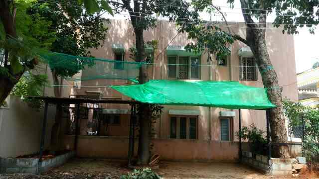 Safety net from coconut tree and tree safety nets from fruits trees - by Lucky Safety Nets, Bengaluru