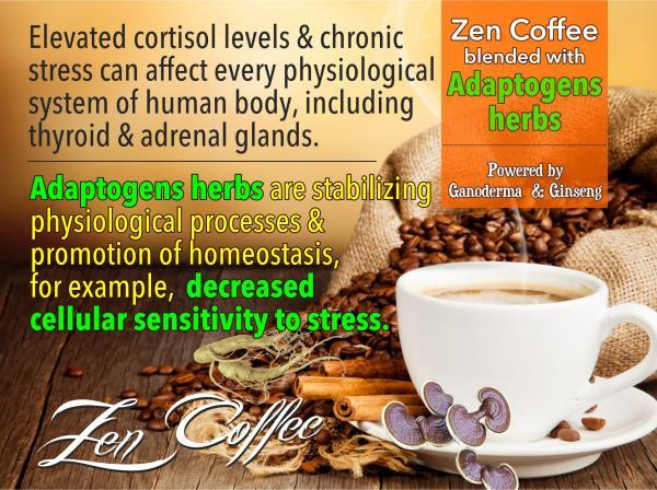 Zen Coffee manufacturers in chennai  100% Natural Instant Power Coffee. 7 Adaptogen herbs in one Coffee. Non-diary Creamer.  Elevated cortisol levels and chronic stress  can affect every physiological system of human body, including thyroid - by BioShope, Chennai