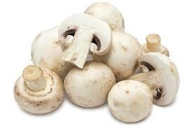 We do deliver Button Mushroom in Huge Volume as per customer requirments. Huge Volume Button Mushroom In Tamilnadu Huge Volume Button Mushroom In Trichy Huge Volume Button Mushroom In Theni Huge Volume Button Mushroom In Madurai Huge Volume - by Sri Ayeamman Mushroom & Vegetables, Coimbatore