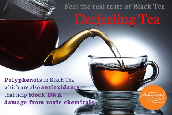 Darjeeling Black Tea 100% Natural Leaf Tea  Rich in Color, Taste & ingredients. world's best tea leaves, expertly blended. It's Refresh your body & mind faster.  Health & Benefits of Black Tea: Reduces plaque formation as well as gives oral - by BioShope, Chennai
