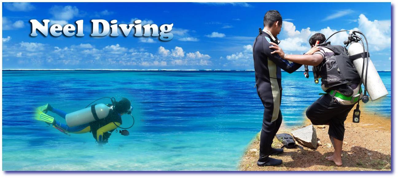 SCUBA Diving in Kerala, Scuba Diving In Kochi, Scuba Diving In Ernakulam, Diving Institute in Kerala, Diving Institute in Kochi/Ernakulam, UnderWater Diving Institute in Kochi, Under Water Diving Institutes in Kerala, Under Water Diving Ins - by NEEL DIVING INSTITUTE, Ernakulam