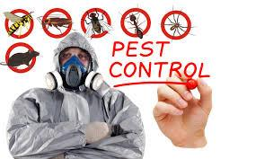 Pest Control Services in Sriperumbudur  Our services include various Industry-acclaimed procedures. To mention a few, termite control, fumigation, prevention of ants and rodents, thermal fogging, gel treatment and herbal treatment. MRS pest control maintains its position as one of the best residential pest control services in and around Chennai region. We are also seeked by several business firms as we maintain ourselves as one of the best commercial pest control services in southern region of India.