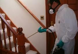 Pest Control Services For Antitermite Treatment in Sriperumbudur  Our services include various Industry-acclaimed procedures. To mention a few, termite control, fumigation, prevention of ants and rodents, thermal fogging, gel treatment and herbal treatment. MRS pest control maintains its position as one of the best residential pest control services in and around Chennai region. We are also seeked by several business firms as we maintain ourselves as one of the best commercial pest control services in southern region of India.