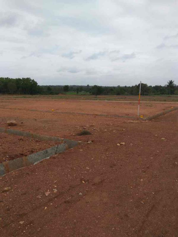 sites for sale in taverekere 20 km from majestic