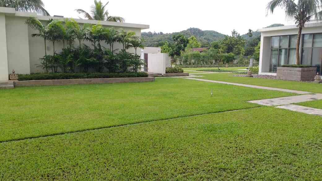 Best landscaping in Kolkata