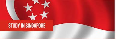 """Singapore is a leading finance, business and education hub with a colourful multicultural-heritage. The """"city in the garden"""" is a blend of cutting-edge technology, with a dynamic cosmopolitan vibe, thanks to a blend of Eastern and Western c - by Sevenseas Edutech Pvt. Ltd., Delhi"""