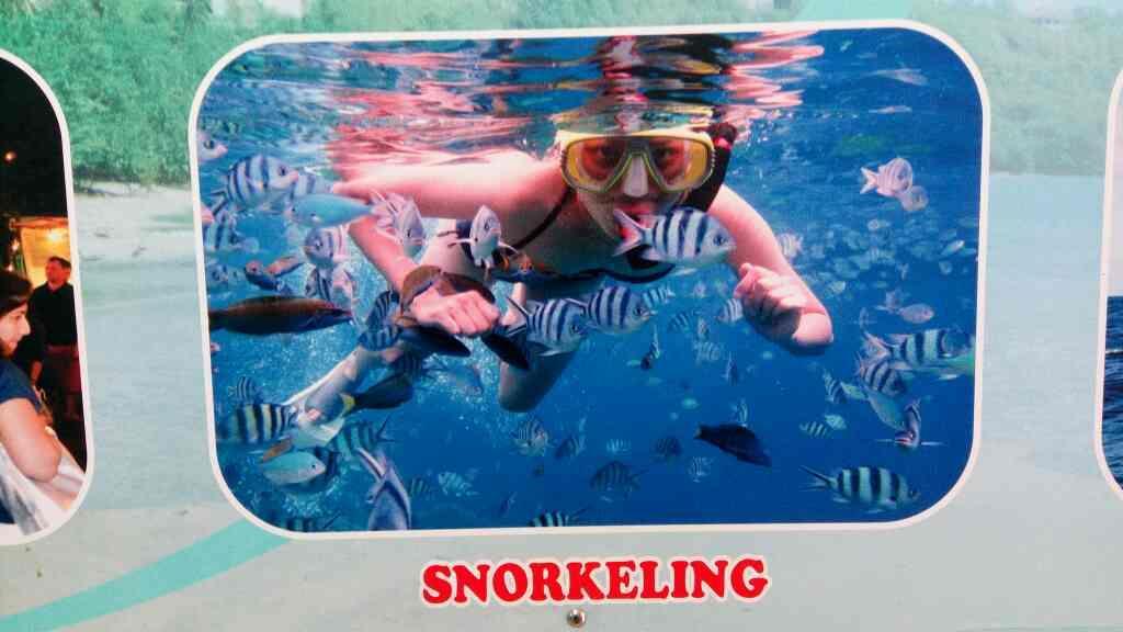 snorkelling in Goa