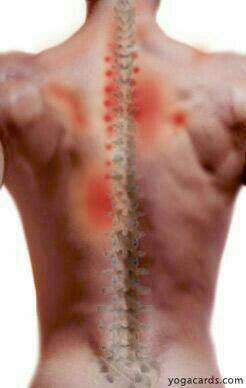 now get your spine checked and get tje best treatment for all back related issues of spine here at dr spine clinic - by Dr Spine Clinic, Bangalore